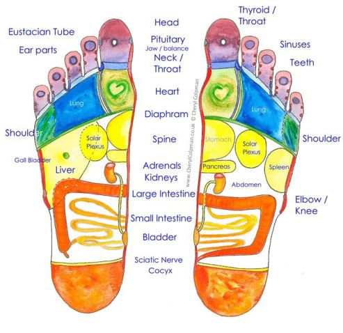 Reflexology foot map soles Cheryl Colpman