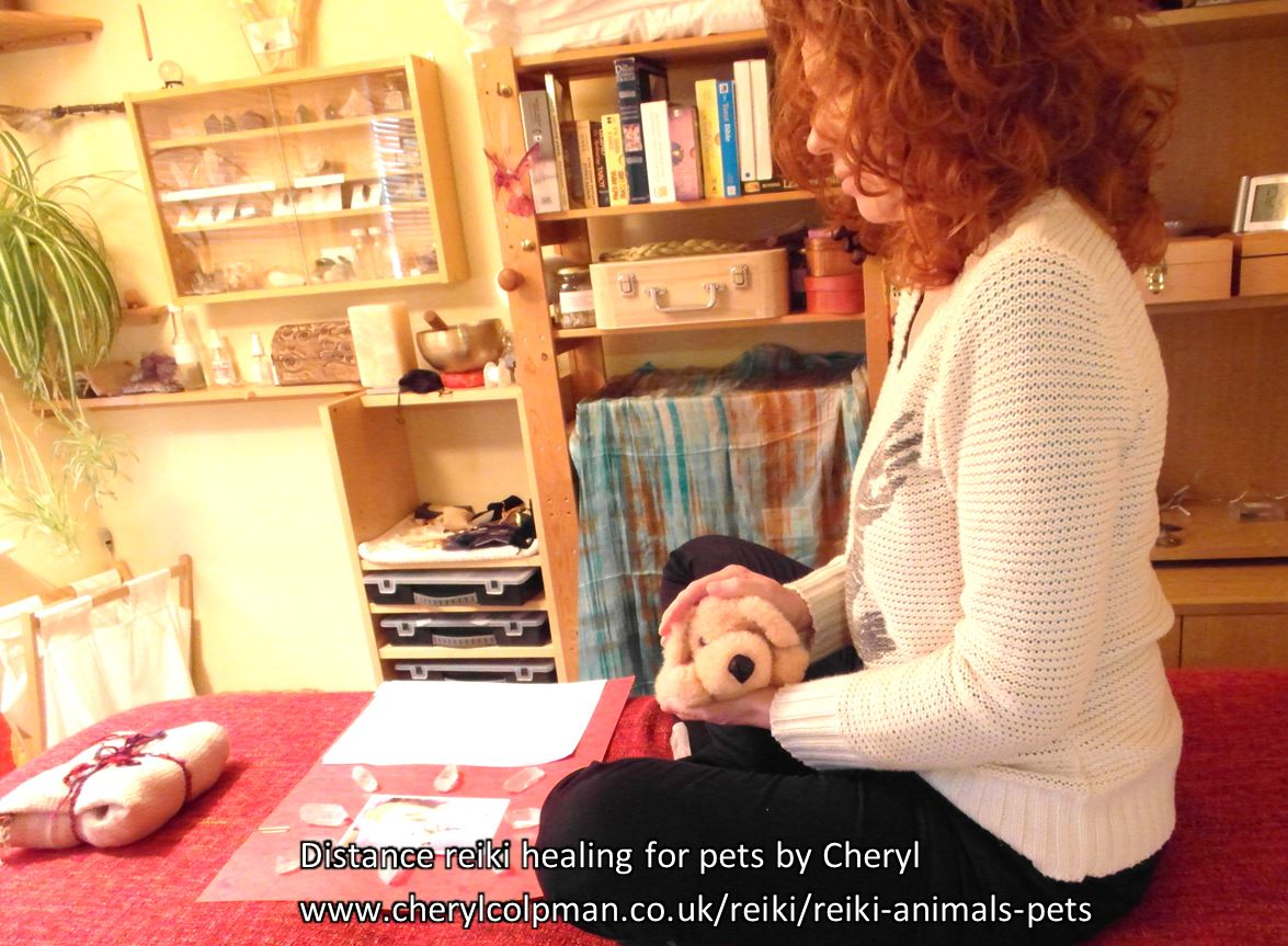 Distance healing reiki for pets and all animals www.cherylcolpman.co.uk
