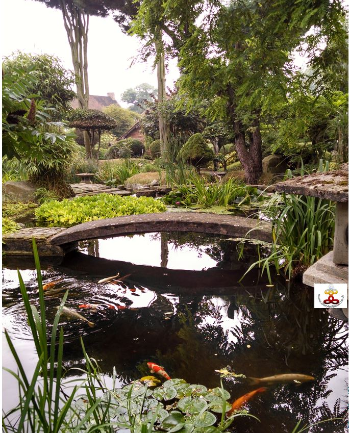 Tranquil image meditation garden bridge fish pool trees Cheryl Colpman